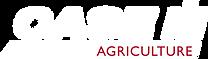 Logo CASE IH Hvid.png