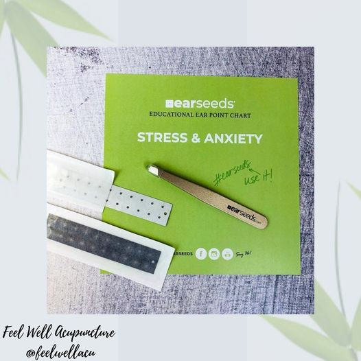 Stress & Anxiety Ear Seeds Kit showing Stainless Steel Ear Seeds and Tweezers