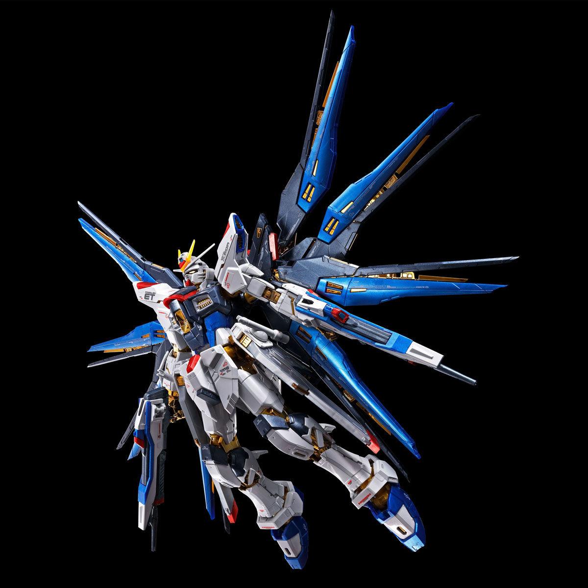 Titanium Finish Version January Presale RG 1//144 Strike Freedom Gundam
