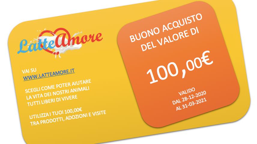 BUONO DI 100.00€ A SOLI 89.00€