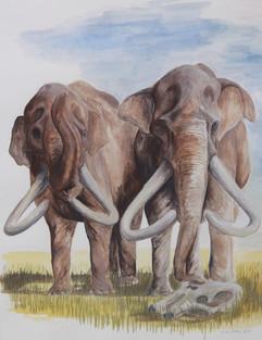 Columbian Mammoths, 2017