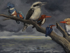 Kinfishers in the Wake of the Storm, 2018