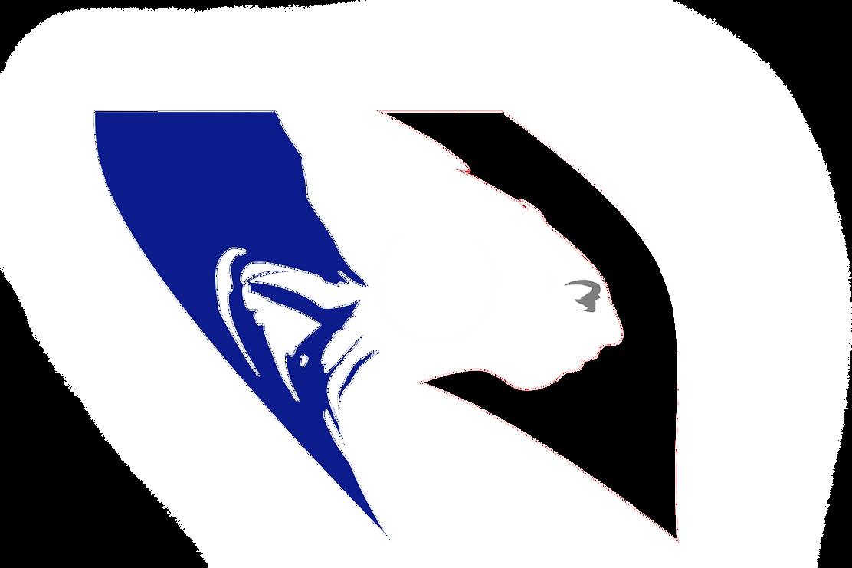 logo_de_la_republique_francaise_0_0 copi