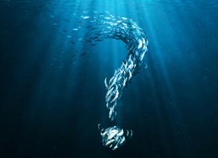 Soirée de la mer Jeudi 5 octobre 2017