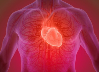 Exercising regularly 'can keep heart and arteries young'