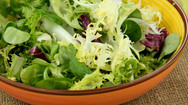 Bagged salad is Salmonella risk, study finds