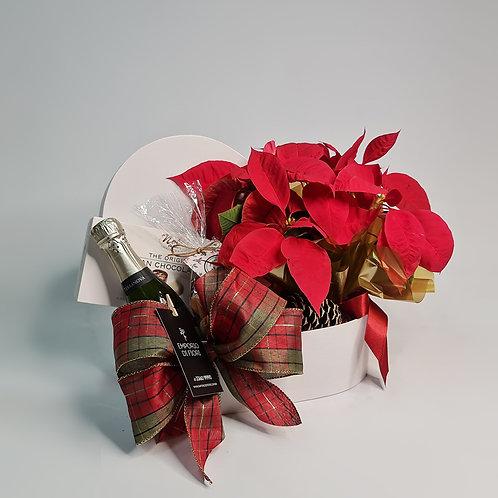 Caixa Natal Sweet