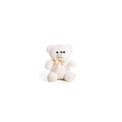 Urso Carinhoso P
