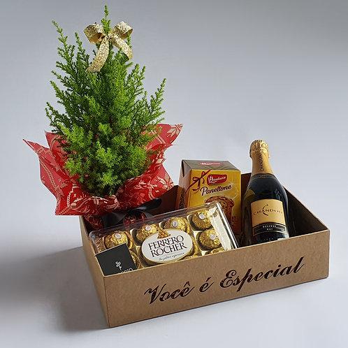 Caixa Natal Você É Especial