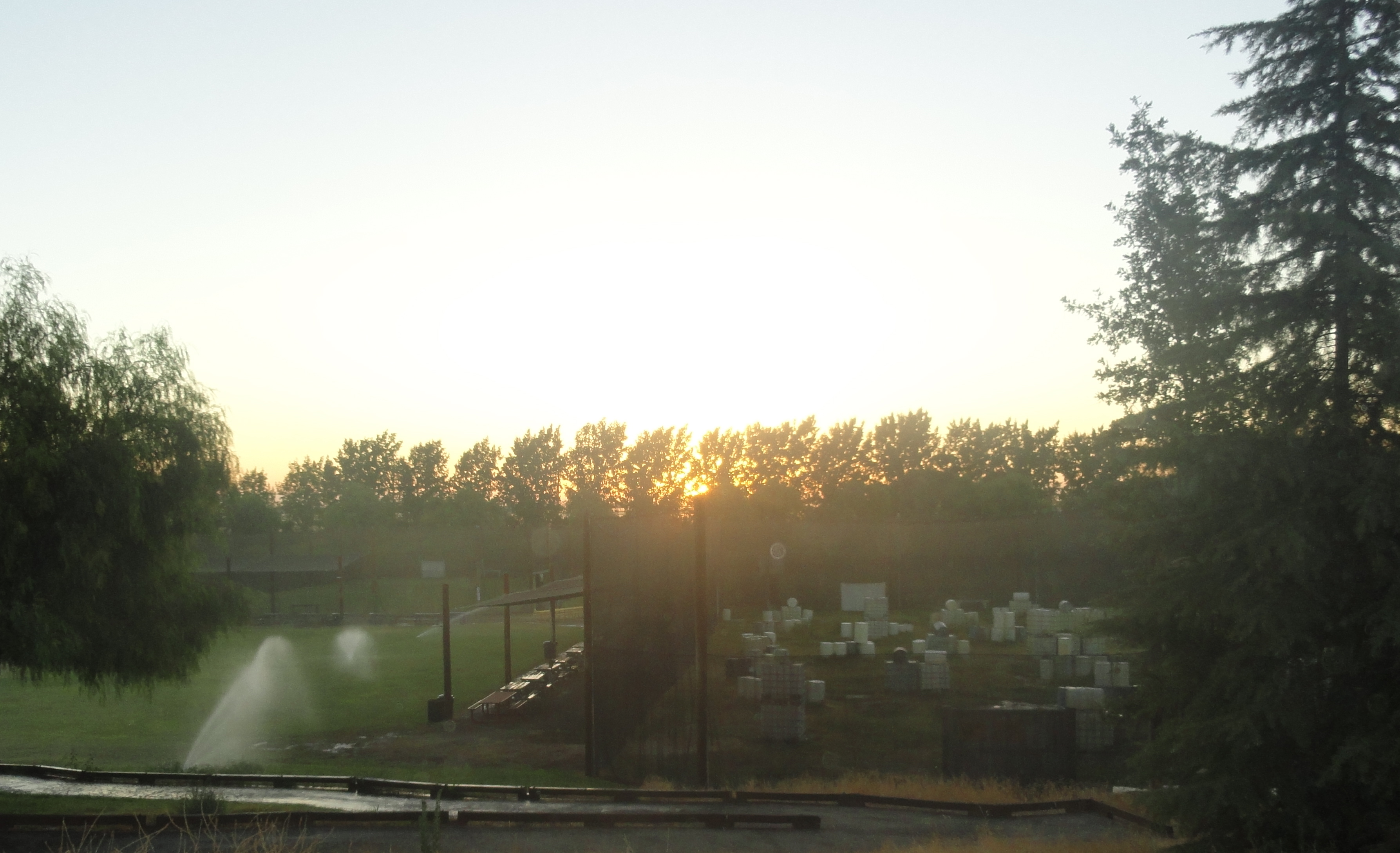 Sunset over Concept Field