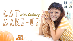 CAT MAKE-UP with Quincy