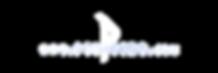 logo ptitivnc texte 2019.png