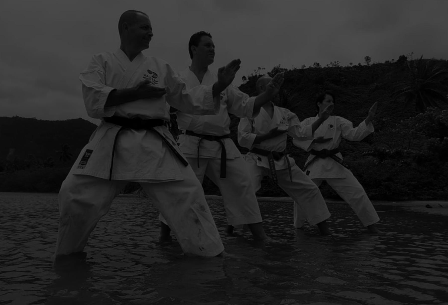 Karate Shotokan - Avançado