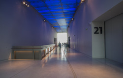 Musee Des Confluences 011
