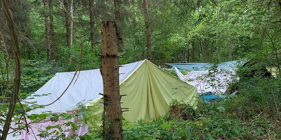 Übernachtung im Wald 5.- 6. Juli