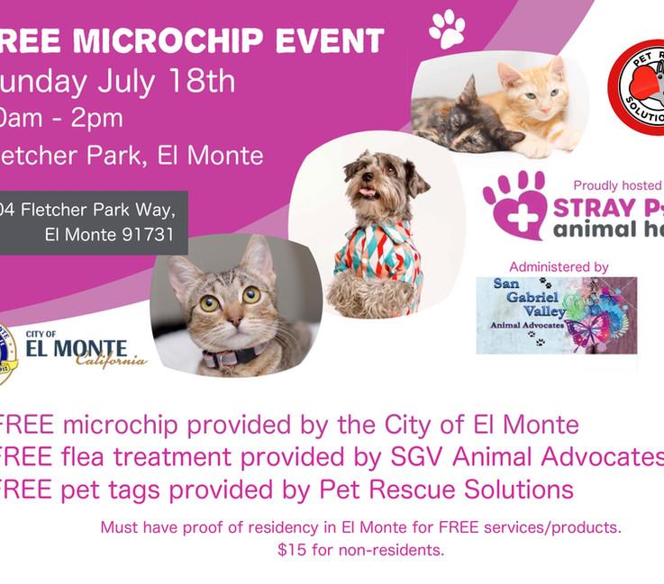 Microchip park event flyer.jpeg