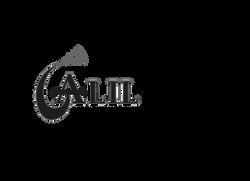 Galil logo
