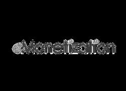 eMonitization logo