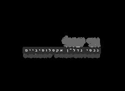 Avi Israeli logo