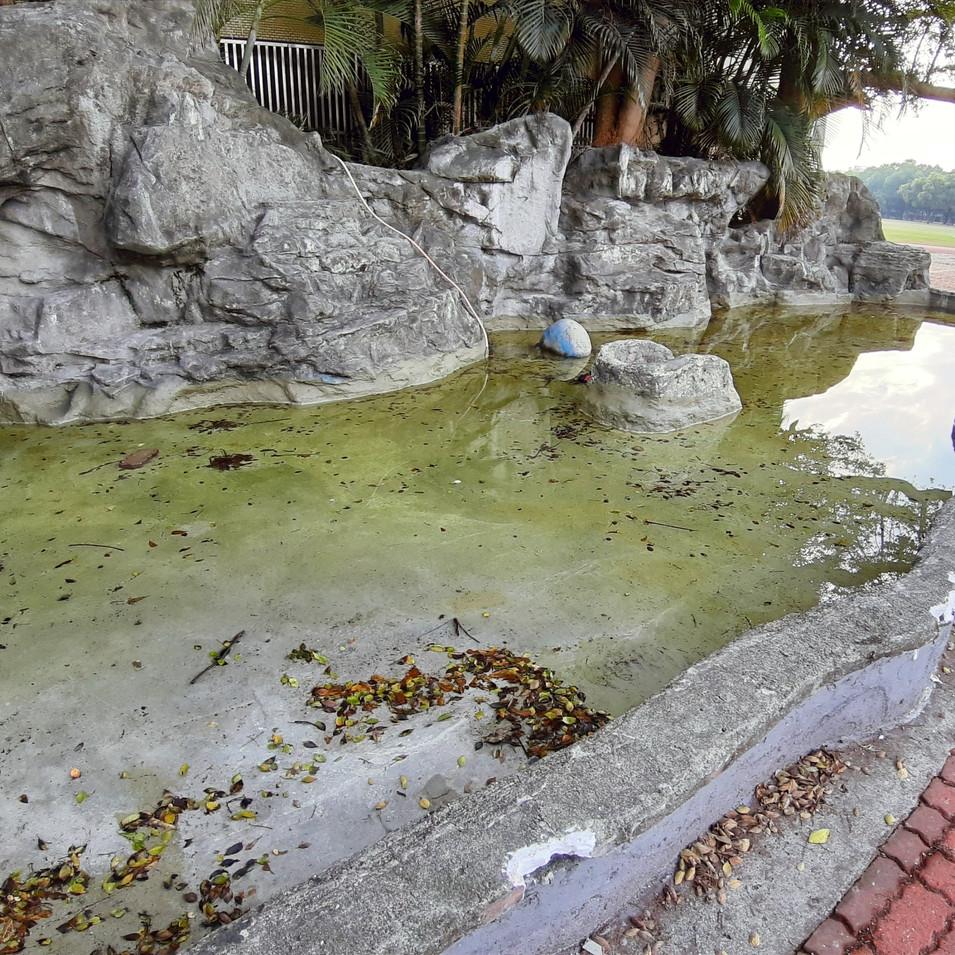 衛道中學魚池整修