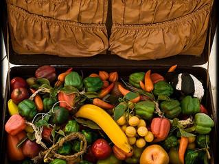 7 Ways to Get More Veggies While Traveling