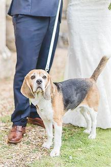 Wiltshire Wedding Photographer | Rebecca Casey Photography | Rebecca Trueman | About Me