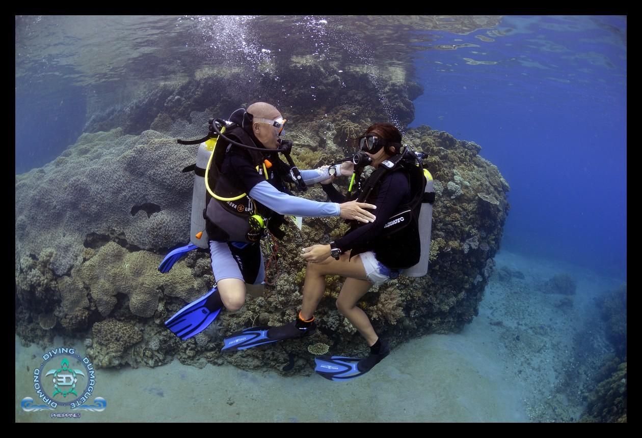 Scuba Diving, Underwater Photography
