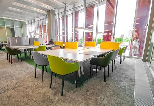 Curzon Library re-design