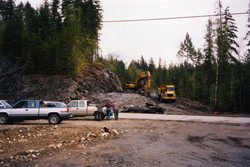 Bear baby in the back of the truck - who really was the foreman anyway.jpg