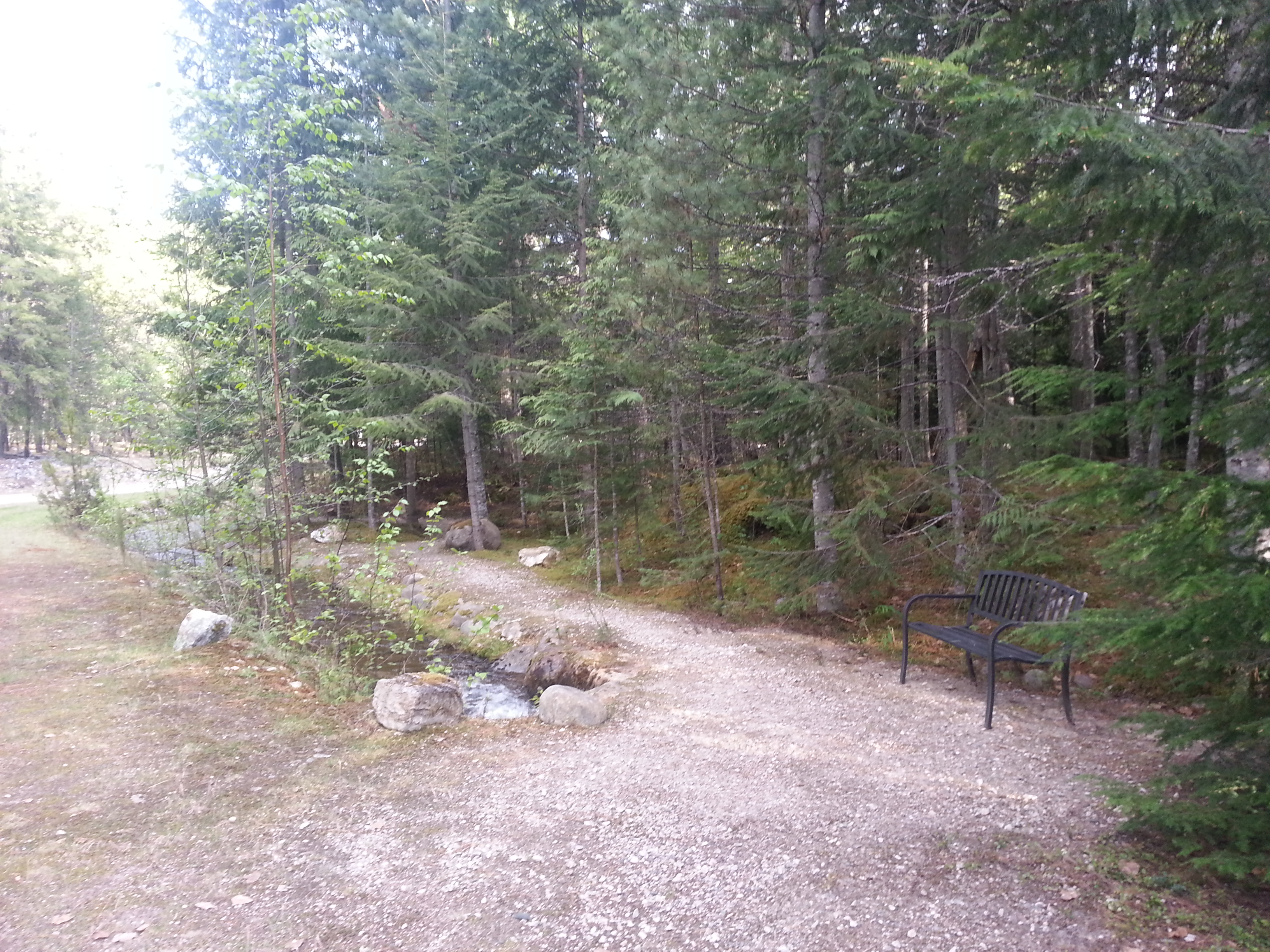 Trail through Property.jpg