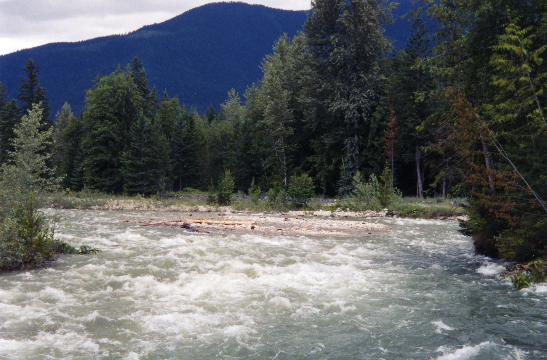 Kuskanax Creek at high water - Dyke is working.jpg