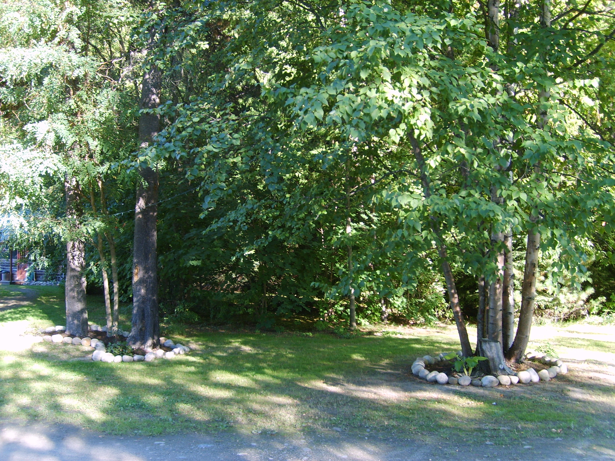 Road side Cabin #4