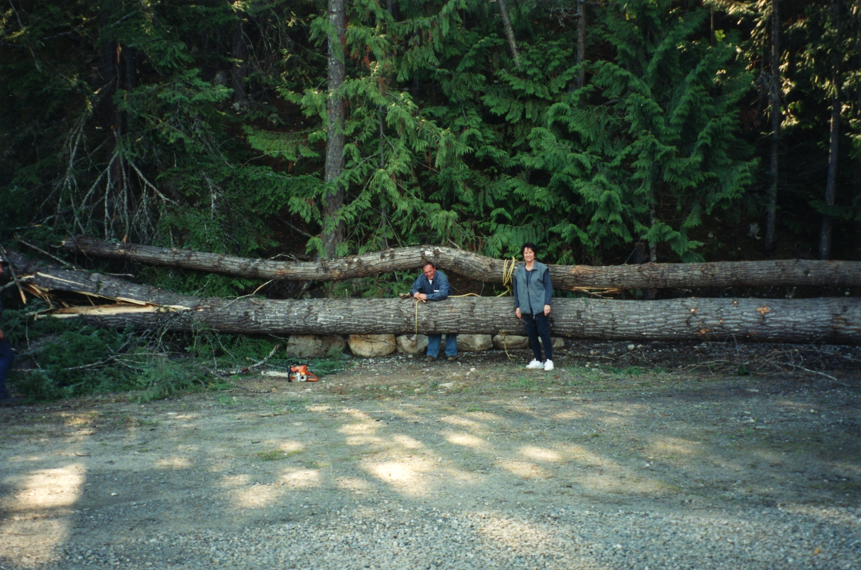 Keith Coates & my Mom - yes some big ole trees sad but they had to go.jpg