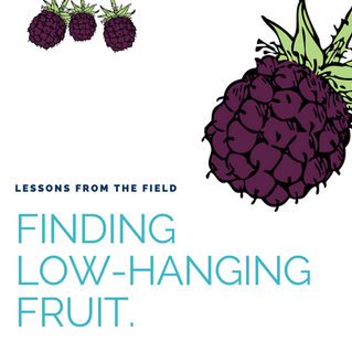 Lessons from the field: Finding low-hanging fruit.