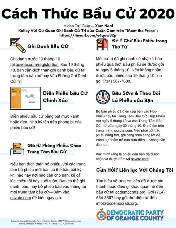 Vote.vietnamese.01.png