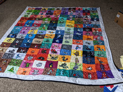 Finished 5th Gen Quilt