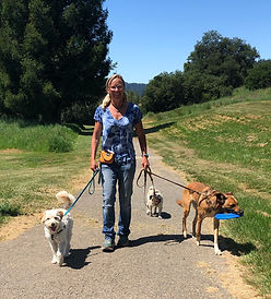 Kirsten walking dogs.jpg