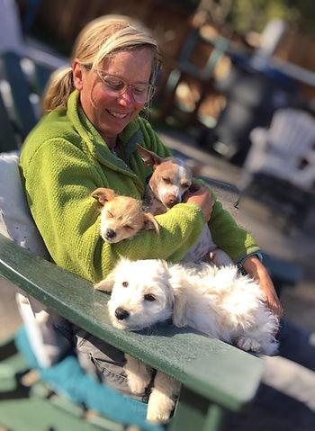 Kirsten Wojcik, KW Happy Dogs, dog training, dog walking