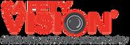 Safety Vision Logo