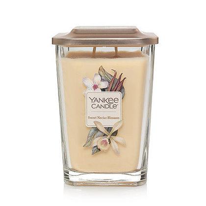 Sweet Nectar Blossom (Giara grande)
