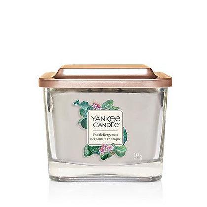 Exotic Bergamot (Giara media)