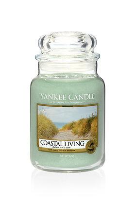 Coastal Living (Candela in giara grande)