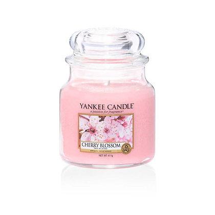 Cherry Blossom (Candela in giara media)
