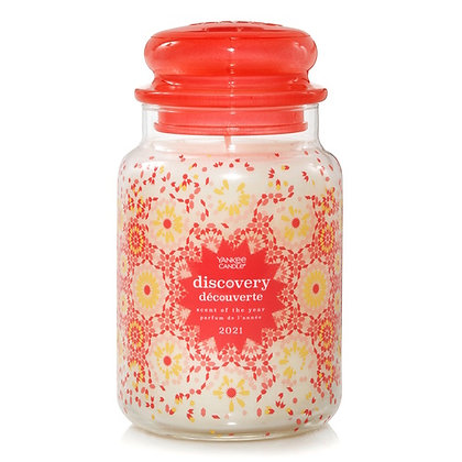 Discovery - Scent Of TheYear 2021 (Giara grande)