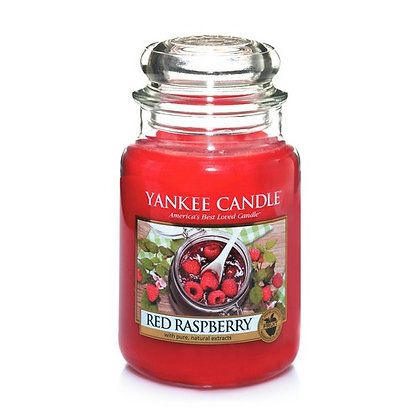 Red Raspberry (Candela in giara grande)