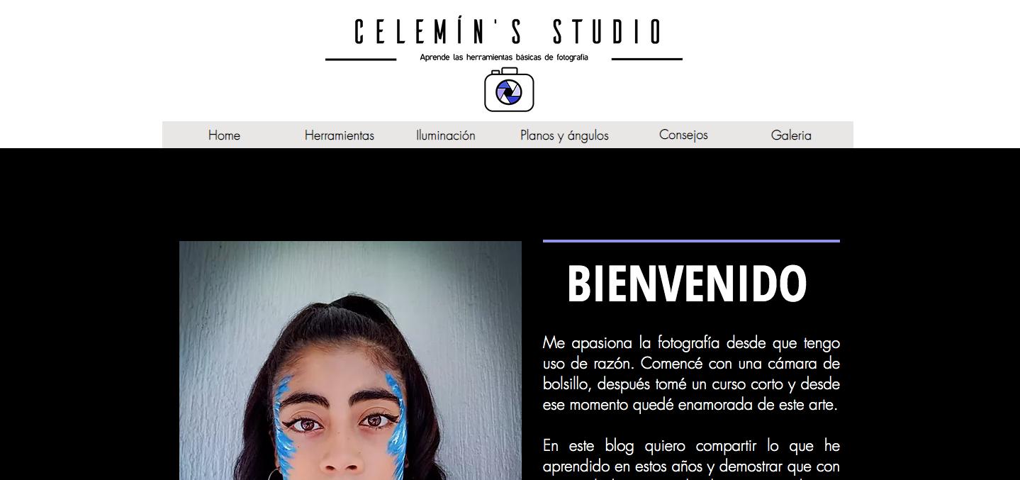 Celemin's Studio