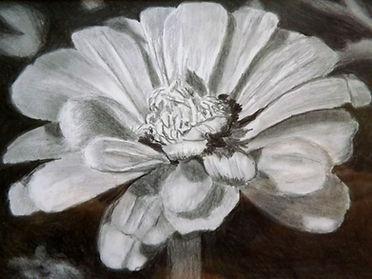 FloralForGraphiteWorkshop.JPG