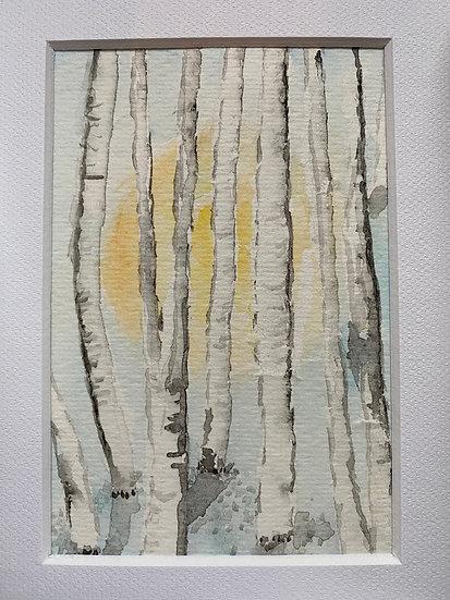 Pastel Birch Tree