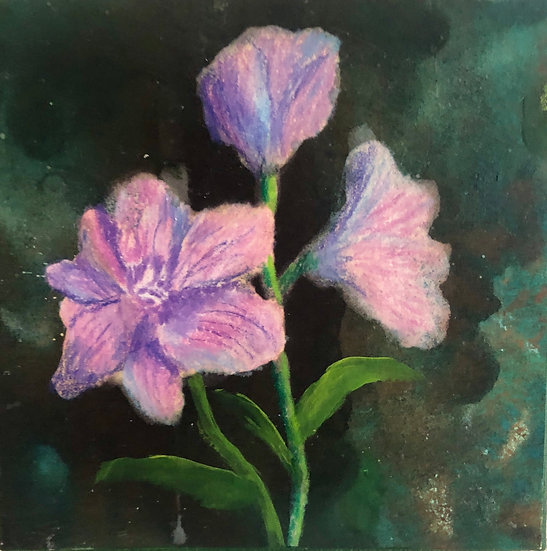 Purple Flowers 1