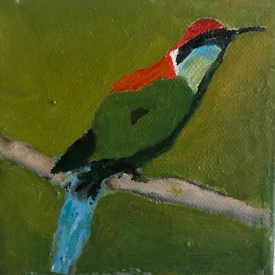 Green Bird 24